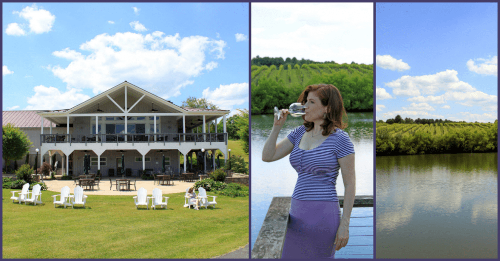 Narmada Winery Collage